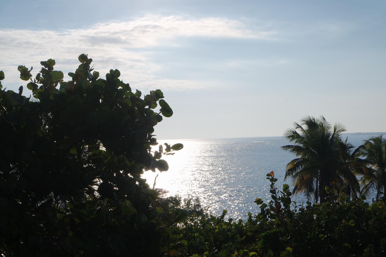 Karibikfeeling auf den Keys